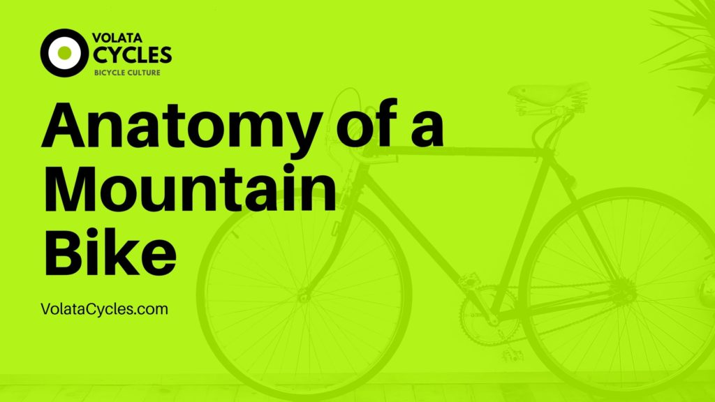 Anatomy-of-a-Mountain-Bike