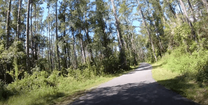 The Best Bicycle Trails in Florida - GreenwaySantos Trails