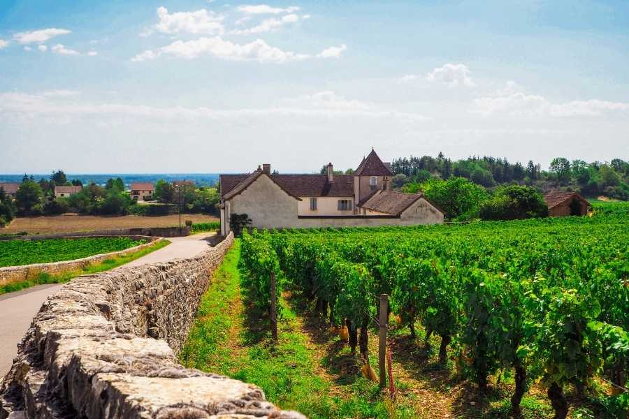 Outfitter Bicycle Tours' Relaxed Burgundy Bicycle Tour
